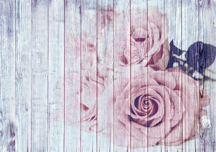 Shabby Chic Dusky Pink Roses On Wood - ShabbyChicandVintageArt