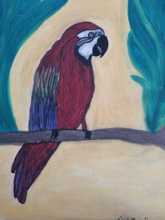 Peaceful parrot - Renee Marie D