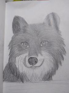 Wolfey