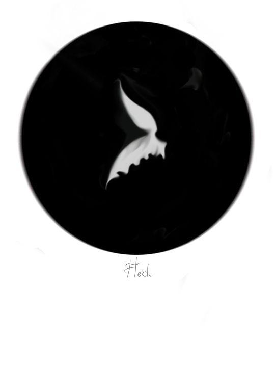 Flesh - Magic of circles