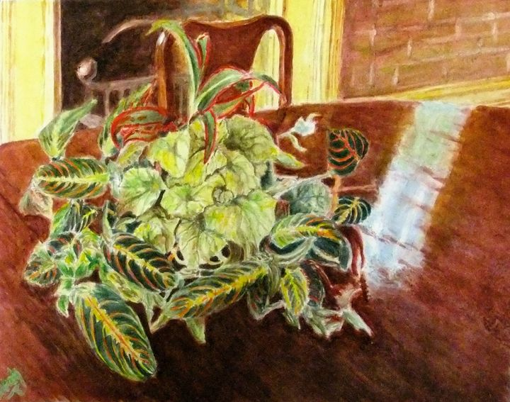 For the love of Plants - Leah Saban Art