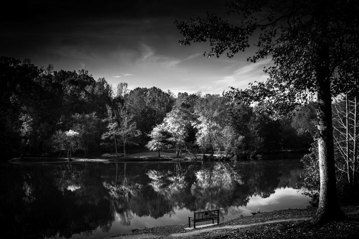 The Bench - LilaUrdaPhotography