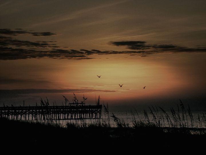 Flying Free - LilaUrdaPhotography