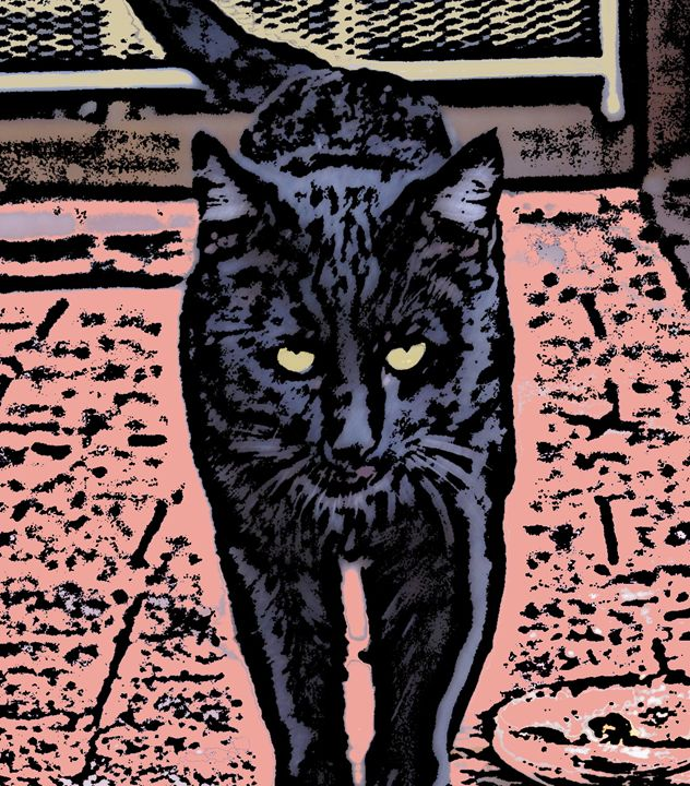 Black Cat 2 - Paizley's Digital Art