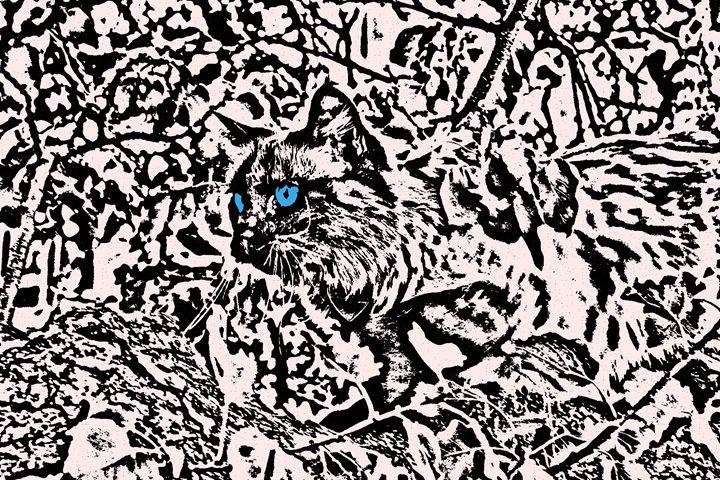 Dede - Paizley's Digital Art