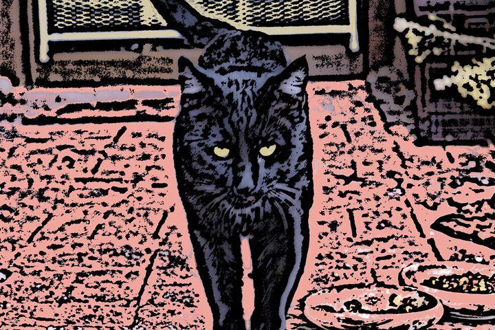 Black Cat - Paizley's Digital Art