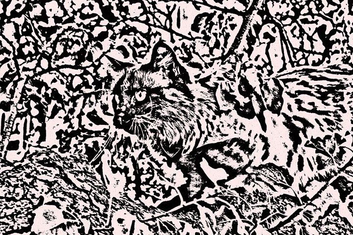 Dede in a Tree - Paizley's Digital Art