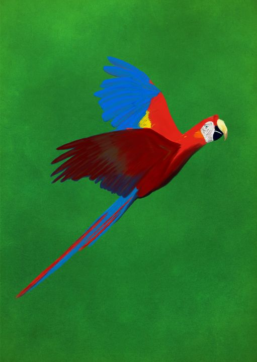Guacamaya - Macaw - Design Shop