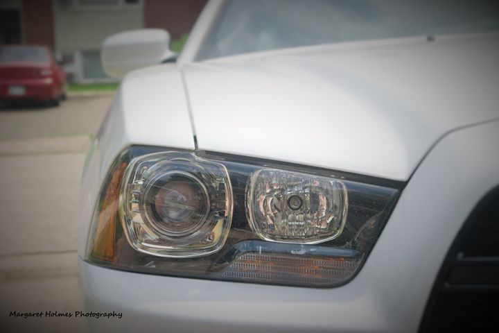 Into The Headlight - Fly High Photography