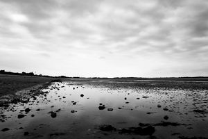 maree basse 2