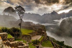 Miraculous Mist