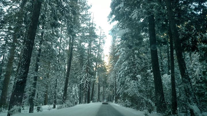 Driving through a Winter Wonderland - Tiffani Burkett