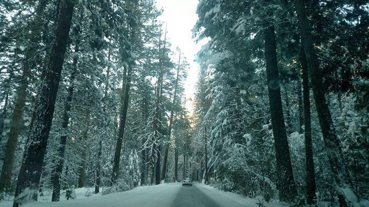 Driving through a Winter Wonderland - Tiffani Burkett