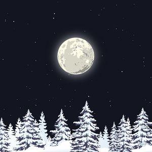 Snowy pine trees under the moonlight