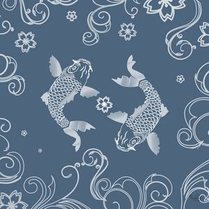 White Koi fishes on steel blue