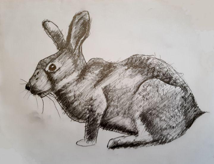 Rabbit - Walter Gordon