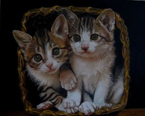 Two kitties in a basket