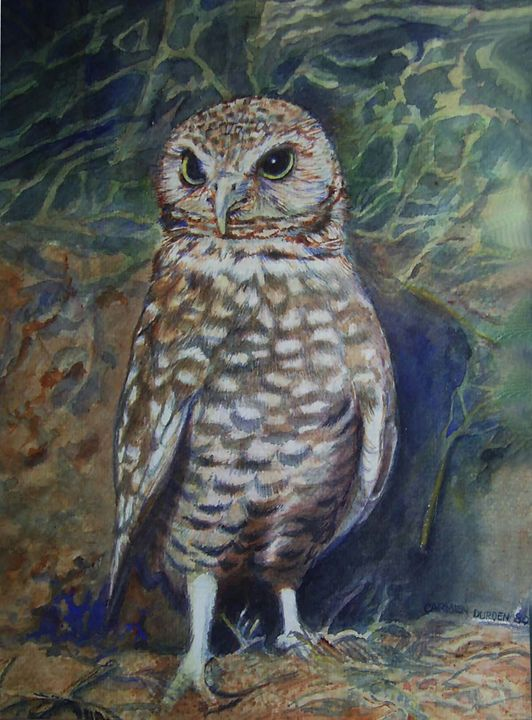 Ground Owl - CarmenArt