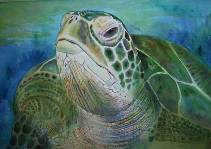 Turtle Looking - CarmenArt