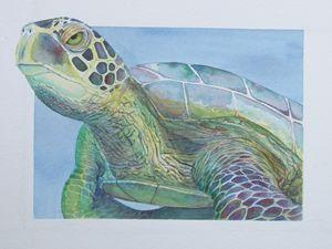 ET Turtle