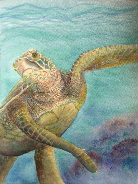 turtle turn - CarmenArt