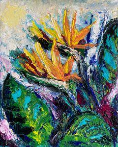 Springtime Flower Power — Strelitzia - DanArtUSA
