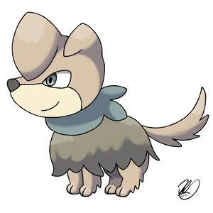Pupscout