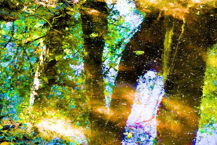 Refletions - Toni Sanders