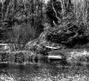 Lake sdie