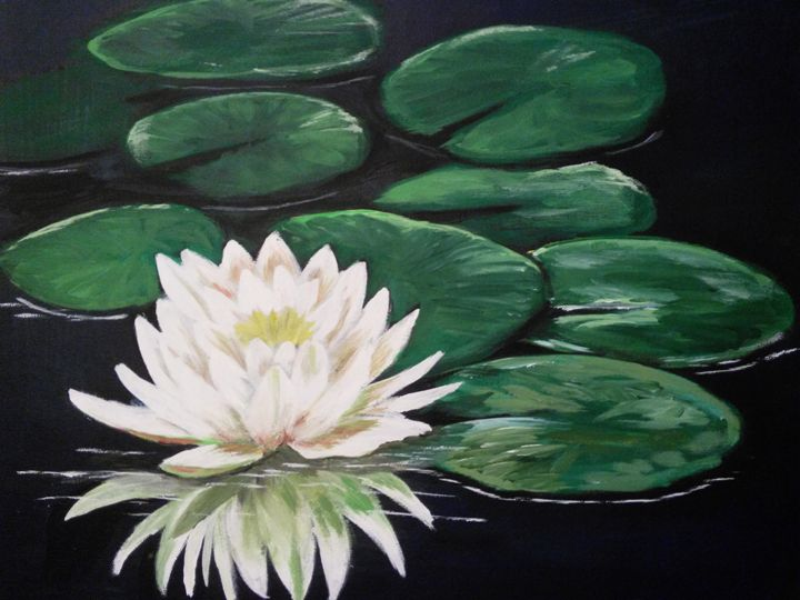 water lily - Dana Abrams