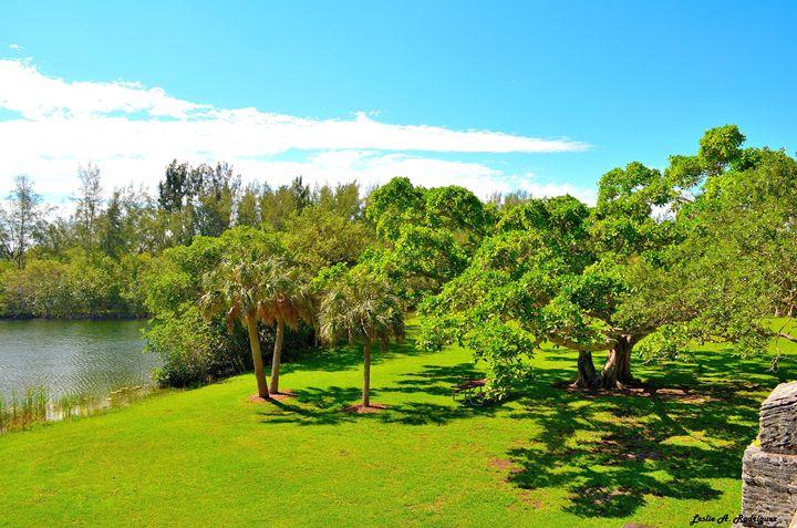 Matheson Hammock Park, Miami - Leslie AR