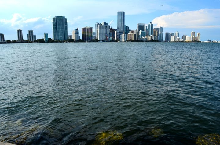 Skyscraper Miami - Leslie AR