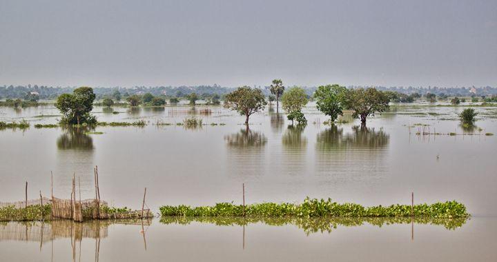 The Tonle Sap, Cambodia - Ian Kydd Miller