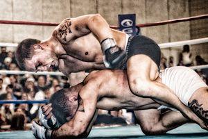 UFC Frankie Edgar SportFighting MMA