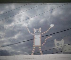 Scary weather cat - MyAllJoy