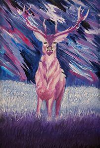 original - evening buck