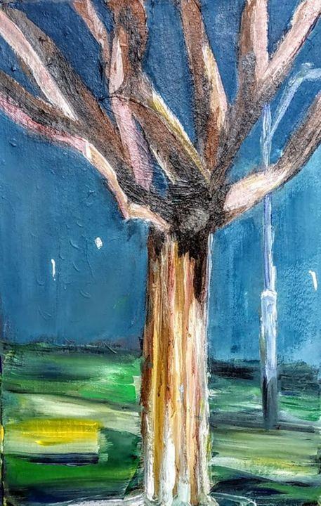 naked eucalyptus in winter - LeeRay11