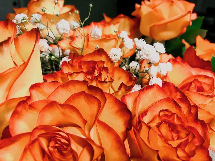 Florals orange - Serrotnere