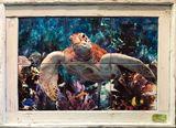 Underwater Montage