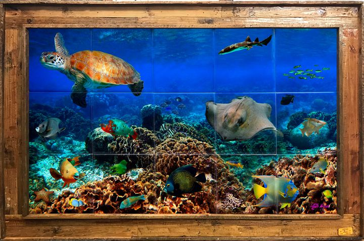 Life Among the Corals - Lobster Trap Art