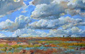 Sky clouds, steppe