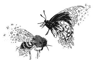 Aniometry Bee and Butterfly