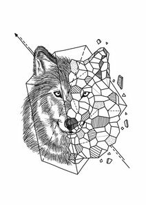 Aniometry Wolf