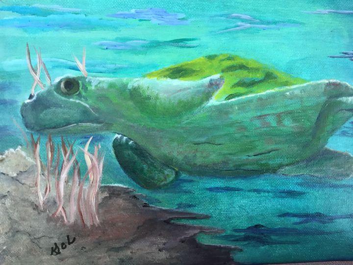 Sea turtle - Gayle Lowe