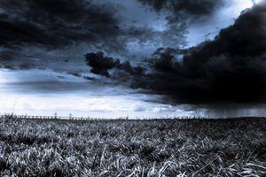 The Great Rain