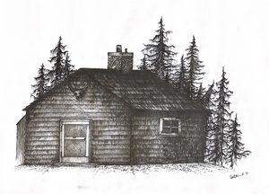 Cabin in the Dark Woods