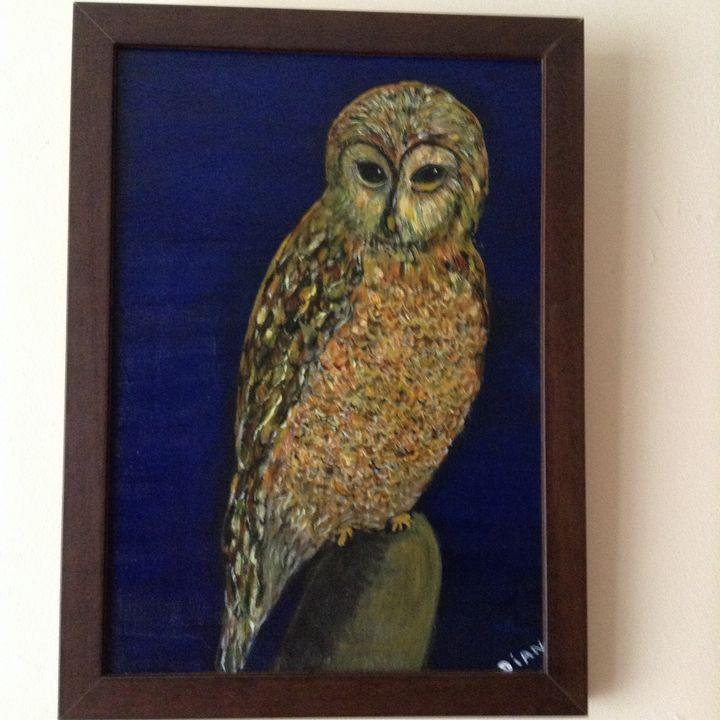 Night Owl - Dian's