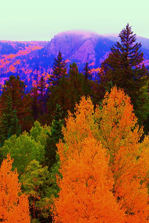 Rocky Mountain Fall - mindful moments