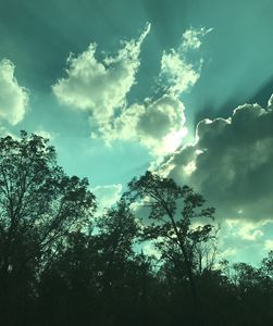 Green filtered Sky