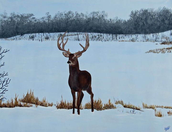 Buck in the snow - Muck-About Fine Art